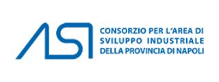 Consorzio per l'area di sviluppo industriale della provincia di Napoli